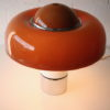Brumbury Lamp Designed by Luigi Massoni for Guzzini 1963 3