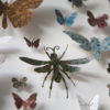Framed Paper Entomology by Helen Ward 4
