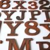 27 Wooden Vintage Shop Letters Clarendon Font