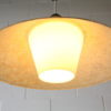 Rare 1950s Fibreglass Ceiling Light by Phillips 4